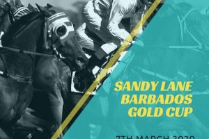 Sandy lane barbados gold cup